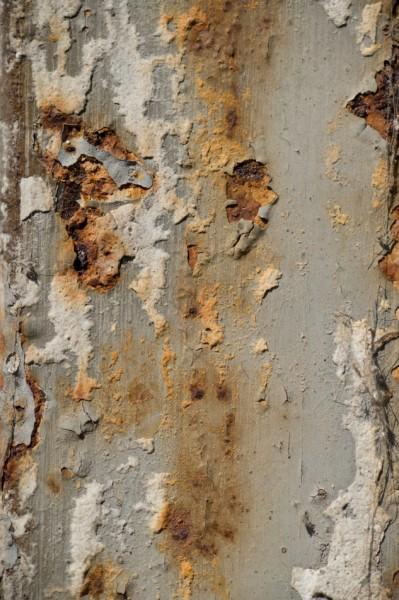 miksang-texturen-17